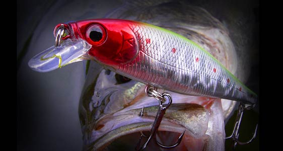 Lucky craft fresh water lure item list pointer 65sp for Lucky craft saltwater lures